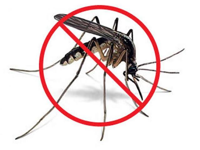 Những điều bạn cần biết về đuổi muỗi bằng sóng siêu âm