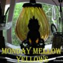 Monday Mellow Yellow