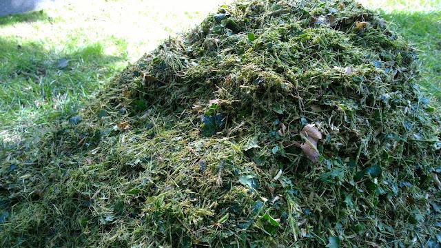 grobes und verholztes Kompostmaterial nach  dem Häckseln (c) by Joachim Wenk