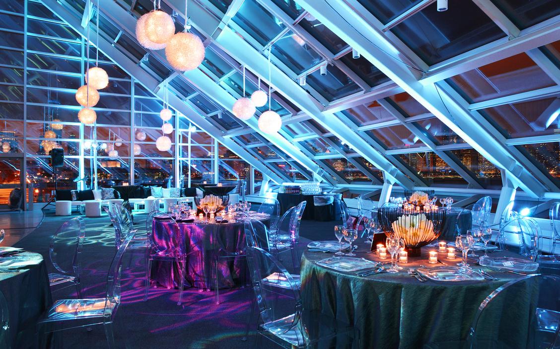 Adler Planetarium Chicago Wedding Venue