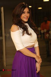 Actress Mehareen Stills in Purple Skirt at Okkadochadu Movie Audio Launch 0014