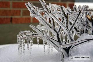 hiver glace verglas