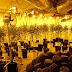 Desmantelan un laboratorio de marihuana en Toledo