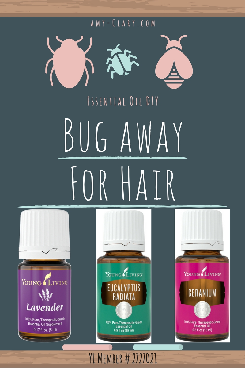 A Diy For Your Shoo Fly Needs Amy Clary Yl Thiev 15ml Lifestyle Review Blog