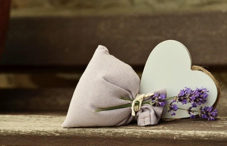 lavender-823600_1280.jpg