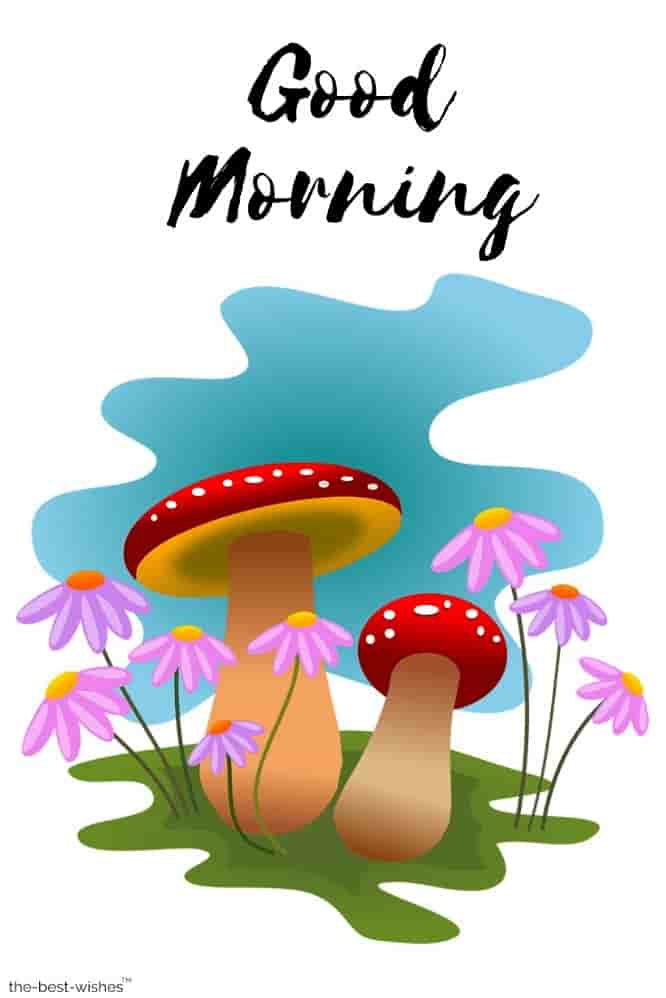morning images with animated mushrooms