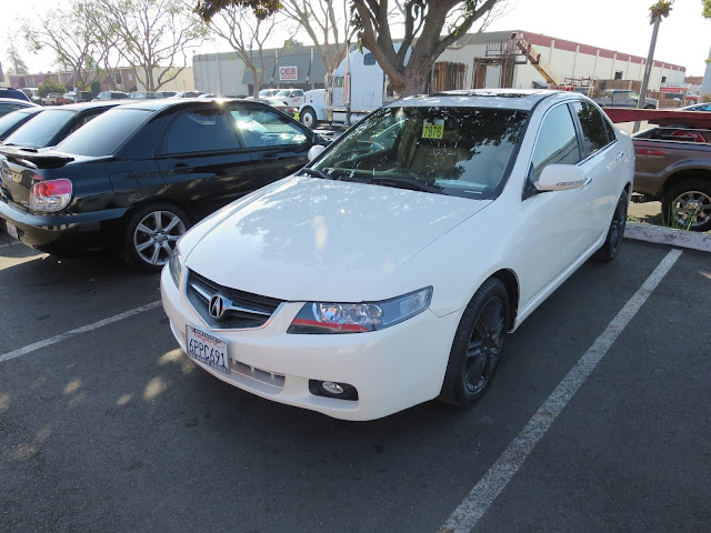 Acura TSX in Championship White from Almost Everything Auto Body