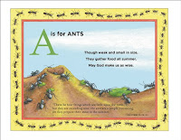 A is for Ants ABC Book