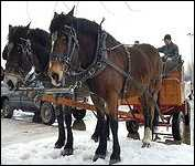 B & T Wagon and Sleigh Rides