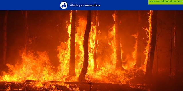 El Gobierno de Canarias declara la situación de Alerta máxima por Riesgo de Incendios Forestales