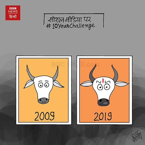 social media cartoon, beef ban, cow cartoon, cartoons on politics, indian political cartoon, indian political cartoonist, cartoonist kirtish bhatt