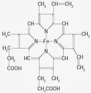 Pengertian Protein, Contoh, Struktur, Sifat, Bentuk, Jenis