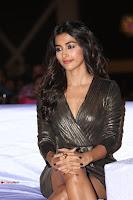 Pooja Hegde looks glamarous in deep neck sleevless short tight golden gown at Duvvada Jagannadham thank you meet function 069.JPG