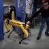 Boston Dynamics-ի ինժեները փորձում է խանգարել ռոբոտին լքել սենյակը (Տեսանյութ)