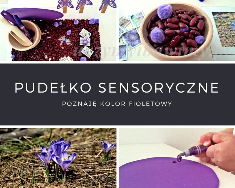 Pudełko sensoryczne - poznaję kolor fioletowy