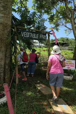 vegetable farm manila