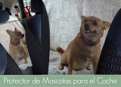 Cómo hacer un protector de mascotas para coches