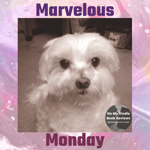 August 6, 2018 edition of Marvelous Monday with Lexi at On My Kindle Book Reviews