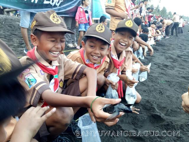Pelepasliaran 1.300 tukik di pantai Cacalan, Banyuwangi.