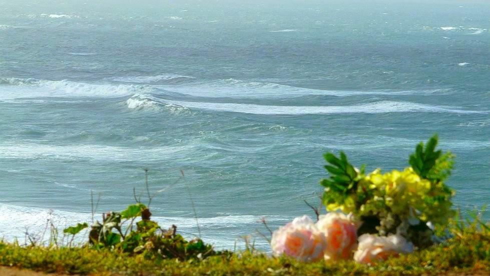 flores mirando al mar playa arrietara la salvaje sope