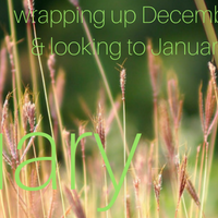 Monthly Wrap-Up: December