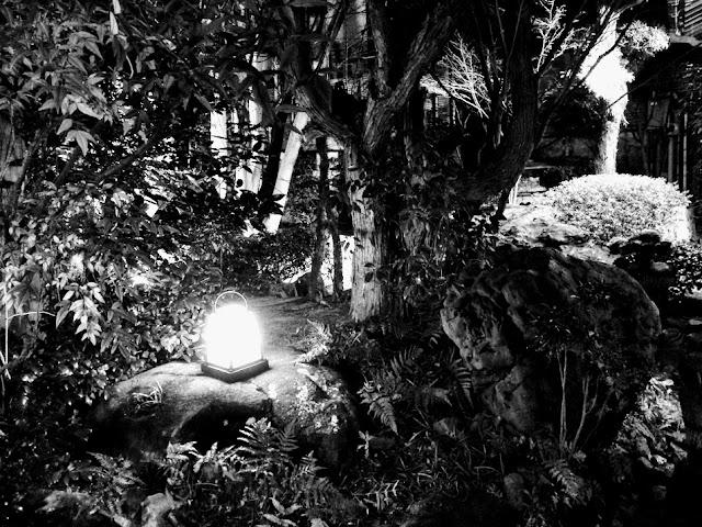 イメージ:夜の庭園