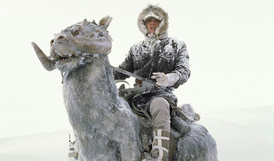 Han Solo on Taunton on Hoth
