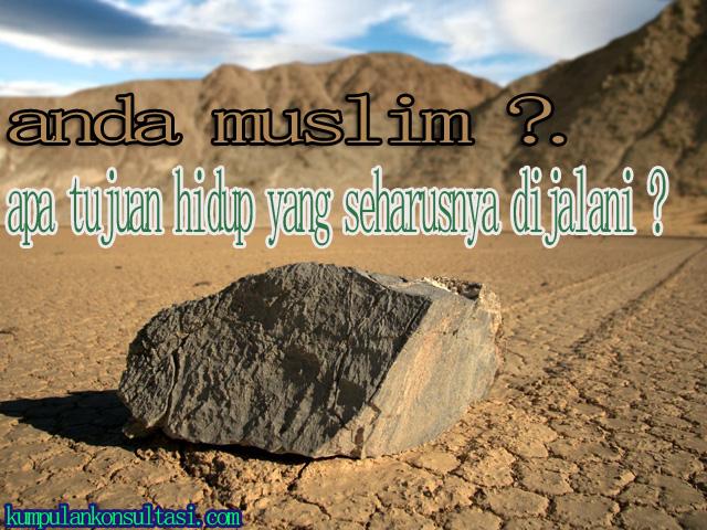 anda muslim ?. apa tujuan hidup yang seharusnya dijalani ?