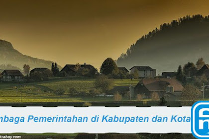 Lembaga Pemerintahan di Wilayah Kabupaten dan Kota