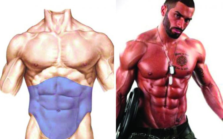 Build muscle gym how much body fat do you need to lose to get those abs out ccuart Gallery