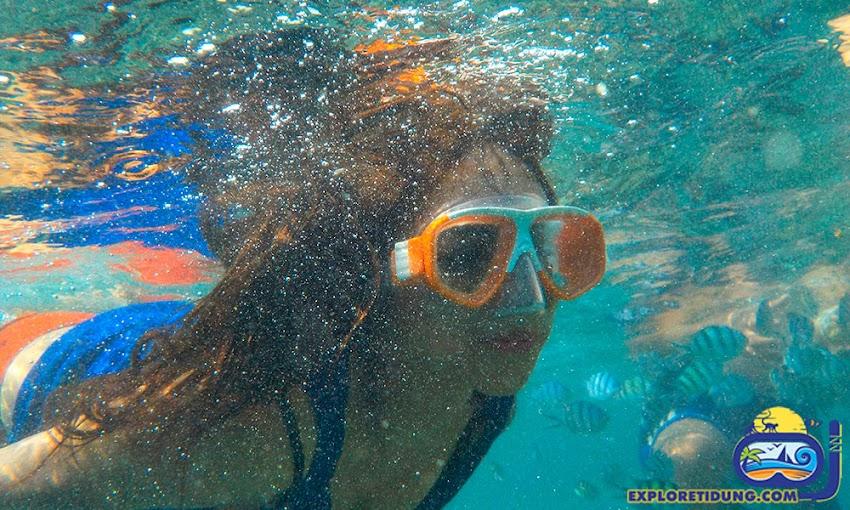 pesona bawah laut snorkeling dan wisata pulau tidung