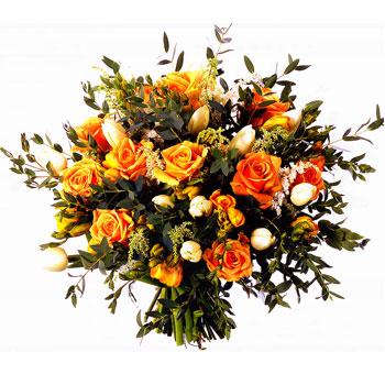 Pan ibrahim i kwiaty koranu