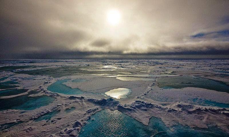 Chi viaggia impara Immagini dal mondo Artide