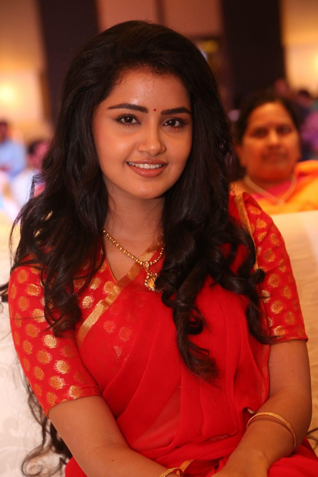 Anupama Parameswaran new cute photos-HQ-Photo-14