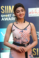 Actress Pranitha Subhash Pos in Short Dress at SIIMA Short Film Awards 2017 .COM 0060.JPG