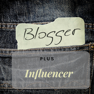 profesi blogger plus influencer
