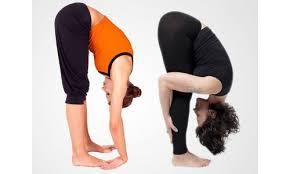 pet kam karne ke yogasan