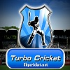 Play Turbo cricket game