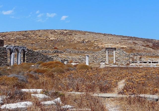 spalona słońcem grecka roślinność, zabytkowe ruin, łukowe sklepienia zabytkowych bram Delos Grecja
