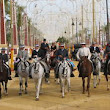 Horse Festival in Jerez - an equestrian must-see event