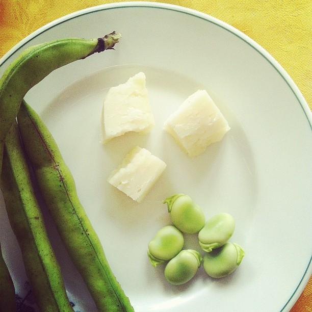 fava beans and pecorino, a roman classic pairing