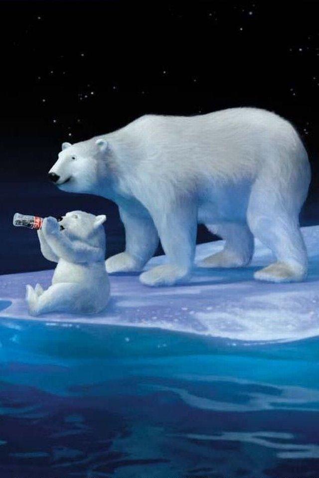 Cute Baby Bears Wallpaper Cool Iphone Wallpapers Coca Cola Polar Bears