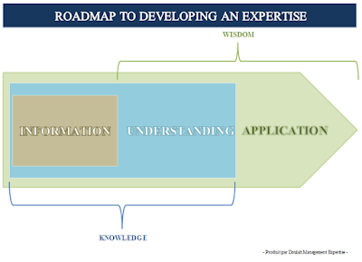 roadmap, expertise, Doulah Management Expertise, David Ibrahim, Consulting, Consultant, Mayotte, www.davidibrahim.net, Touché!