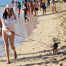 Lauren Silverman in White Bikini, Walking her Dog at Beach in Barbados