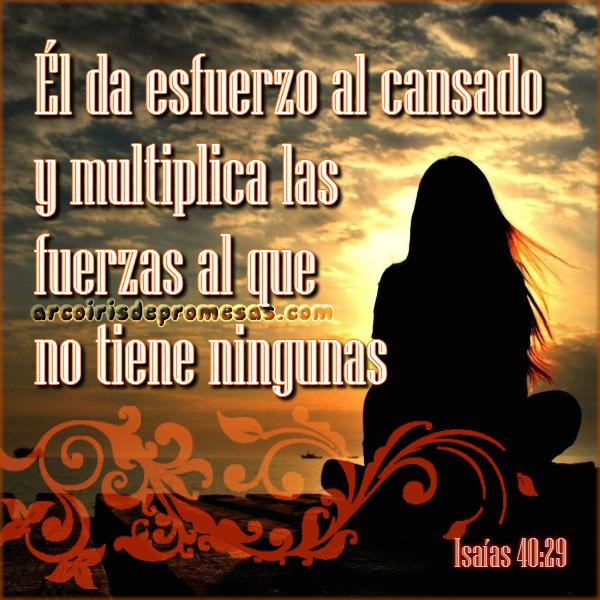 reflexiones cristianas con imágenes dios multiplica tus fuerzas