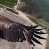5 صور الطقت بواسطه طائرات الدرونز تجعلك تحبس نفسك