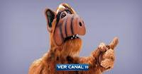 Alf en vivo por internet