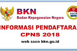Pendaftaran CPNS 2018 Hanya Melalui sscn.bkn.go.id. Berikut Informasi Selengkapnya