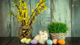 Easter Bunny. Easter Eggs