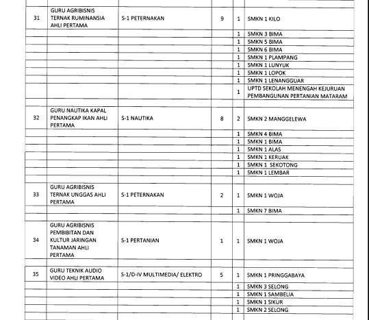 Download Formasi CPNS 2018 NTB Semua Kabupaten Dan Kota